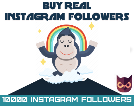 instagramfollowers (1)